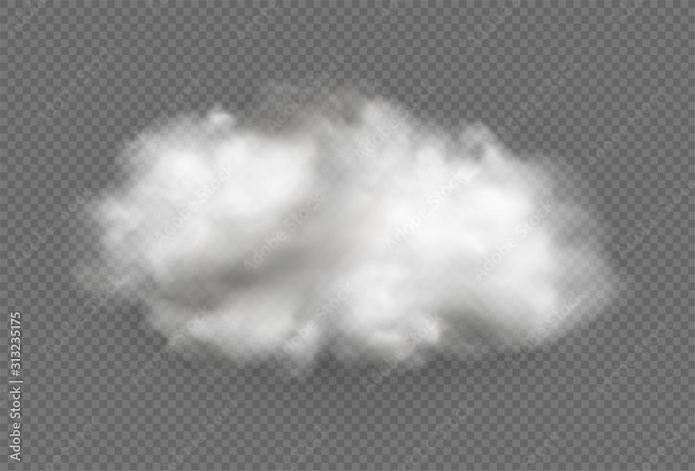 Fototapeta Cloud of fog, smoke, urban smog. Realistic isolated cloud on transparent background.