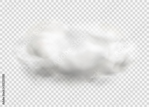 Obraz Cloud of fog, smoke, urban smog. Realistic isolated cloud on transparent background. - fototapety do salonu