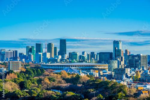 Cuadros en Lienzo 新国立競技場 国立競技場 風景 日本 東京 オリンピック スタジアム 都市風景 青空 鳥瞰図