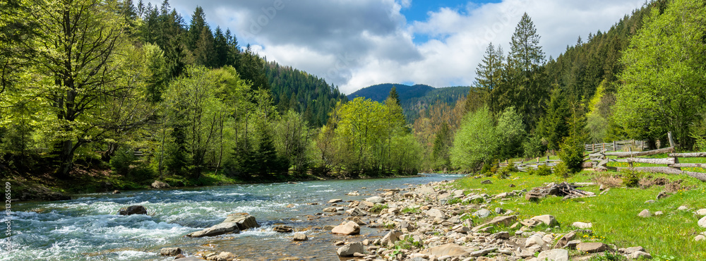 Fototapeta river in mountains. wonderful springtime scenery of carpathian countryside. blue green water among forest and rocky shore. wooden fence on the river bank. sunny day with clouds on the sky