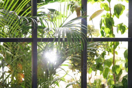 Beautiful view through window on garden in morning