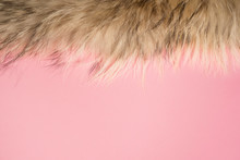Closeup Top View Flatlay Color Photography Of Soft Real Fluffy Animal Fur Isolated On Pastel Pink Background. Minimalism Concept. Photo Background With Blank Empty Copyspace For Text.