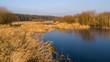 Syczeń 2020, Ciepła zima nad Biebrzą, Biebrzański Park Narodowy, Biebrza Podlasie, Polska