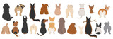 Fototapeta Child room - Dogs poses behind. Dog`s butts. Flat design clipart