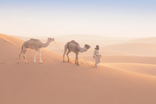 Bedouin And Camel On Way Throu...