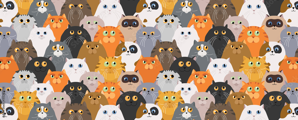 Fototapeta Cat poster. Cartoon cat characters seamless pattern. Different cat`s poses and emotions set. Flat color simple style design