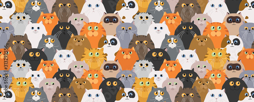 Cat poster Wallpaper Mural