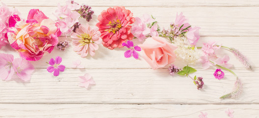 pink flowers on white wooden background