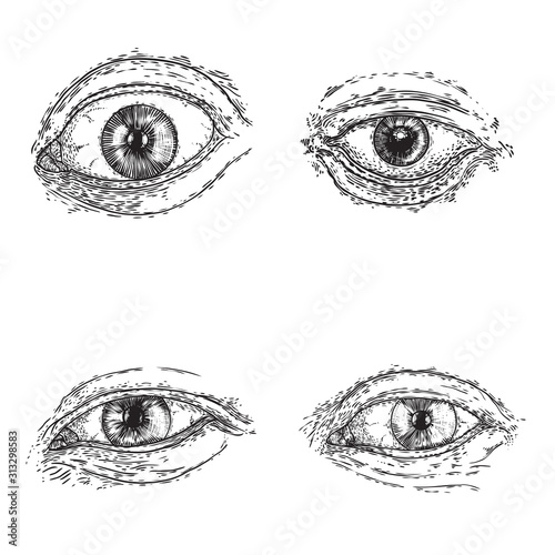 Fotografia Set of various drawing of the human eye in different direction and emotion