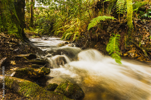 Photo arroyo con agua efecto seda