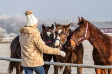 Woman With Her Horses At Ranch...