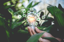 Hand Holding Light Bulb With Icons Energy Sources For Renewable,natural Energy And Love The World Concept.