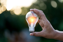 Hand Holding Light Bulb,energy Sources For Renewable,natural Energy Concept.