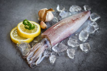 Raw Squid On Ice With Salad Sp...