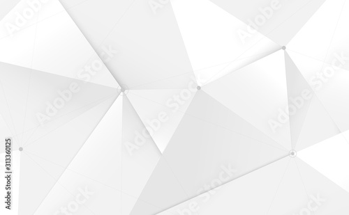 Fototapeta Abstract white 3d low polygon and lines technology background. Vector illustration obraz