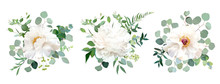 Wedding White Flower Vector Design Bouquets