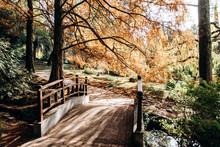 Very Picturesque Small Bridge ...