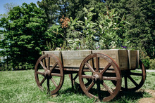 Old Wheeled Cart With Flowers In Parks