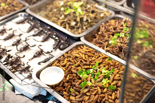 Fotomural  Worms, larvae, scorpions and other local asian snacks on the street market