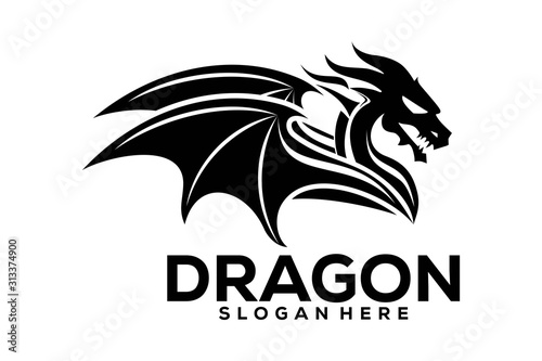 Obraz na plátne Dragon Logo Icon, Dragon Logo Template, Dragon logo Vector illustration