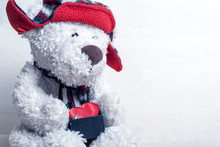 White Teddy Bear In A Red Hat ...