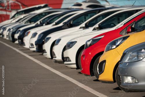 Obraz Cars in a row. Used car sales - fototapety do salonu