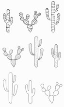 Cactus Set Of Various  Shapes With And Without Thorns. Hand-drawn Outline Succulents Cacti Desert Plants. Stock Vector Illustration Isolated On White Background.