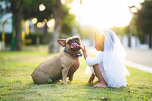 Cute Little Girl Playing With Her Lovely French Bulldog In Park.