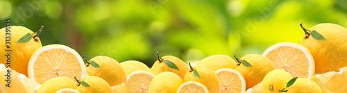 Lemons from your favorite garden