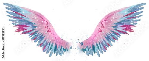 Slika na platnu Beautiful magic watercolor blue pink wings