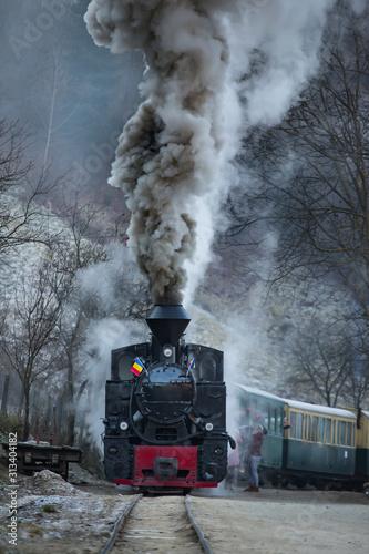 Obraz pociąg  steam-train-puffing-along-the-tracks