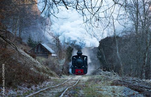 Cuadros en Lienzo Steam train puffing along the tracks