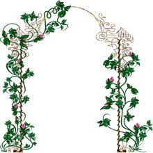 Sketch, Arch Decorated With Roses, Vines And Leaves