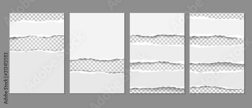 Obraz White, torn paper templates elements are on grey background. Vector infographics for presentation, flyer and leaflet, banner - fototapety do salonu