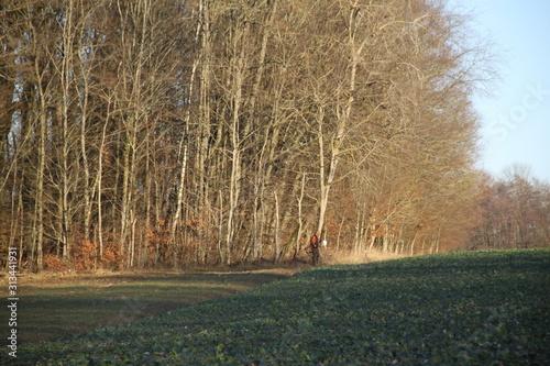 Foto Chasseur avec ses chiens