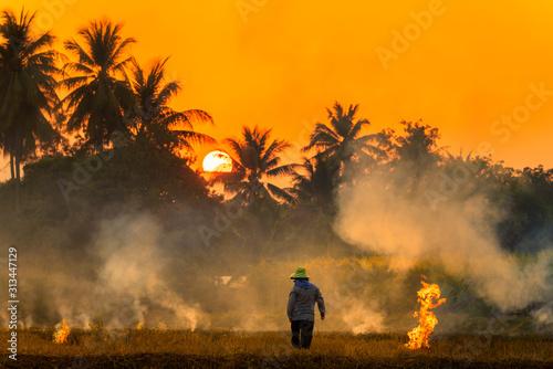 Canvastavla  Farmers burn rice fields in rice causing PM2