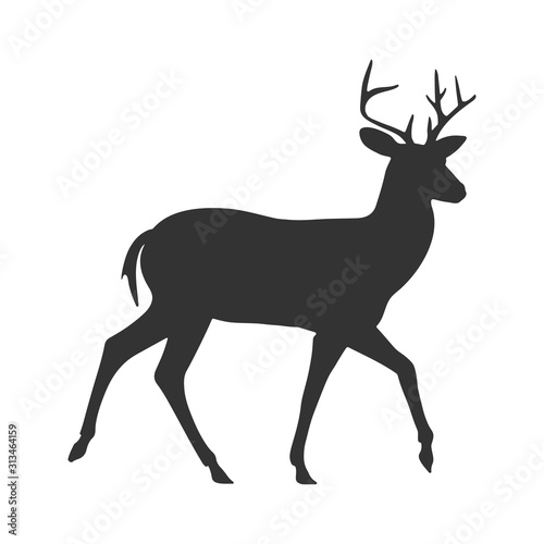 Contour silhouette of a deer. Isolated on white background Canvas Print