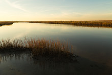 Light Of Setting Sun Over Estuary Pool In Galveston Island State Park Wetlands