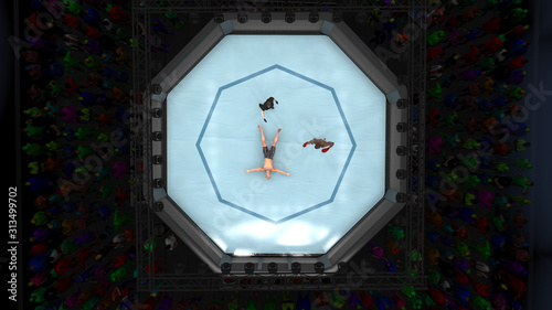 Fotografie, Obraz  Knocked out cage fighter laying down in octagon ring 3d render