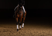 Horse Dressage With Rider In T...
