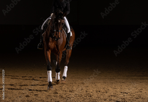 Tableau sur Toile Horse dressage with rider in the dress of the heavy class in a trot with curb part
