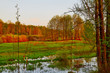 canvas print picture Nature landscape with field, water of lake or swamp and big tree on the foreground