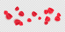 Scattered Red Rose Petals Isol...