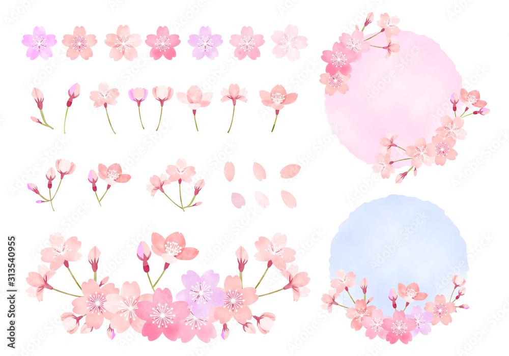 Fototapeta  水彩 手描き風 桜のイラスト素材セット