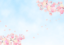 水彩 手描き風 桜と空の背景イラスト 03