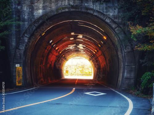 Fototapety, obrazy: Two ways tunnel