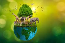 Concept Nature Reserve Conserv...