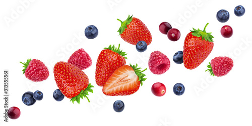 Flying berries isolated on white background with clipping path, different fallin Canvas Print