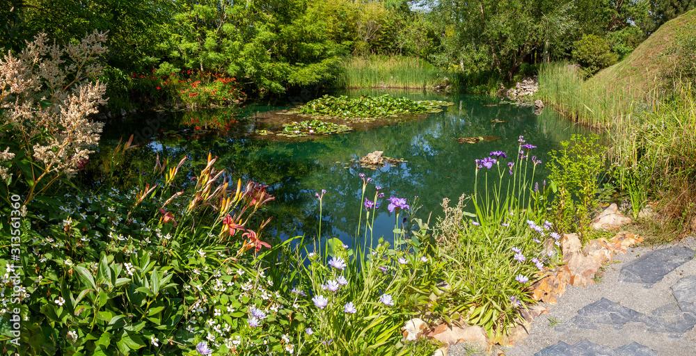 Fototapeta Jardin - fleurs bordant une mare