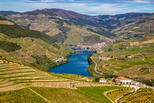 Douro Valley - Vila Real Distr...